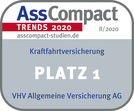 VHV_TRENDS-II-2020_Kraftfahrt_Platz-1.png